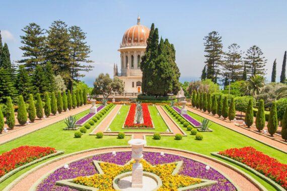 Египет или Израиль без цветущих садов
