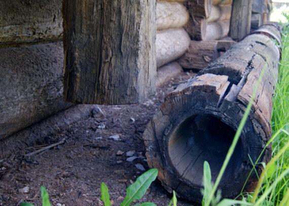 Первые водопроводные трубы делали из дуба и лиственницы